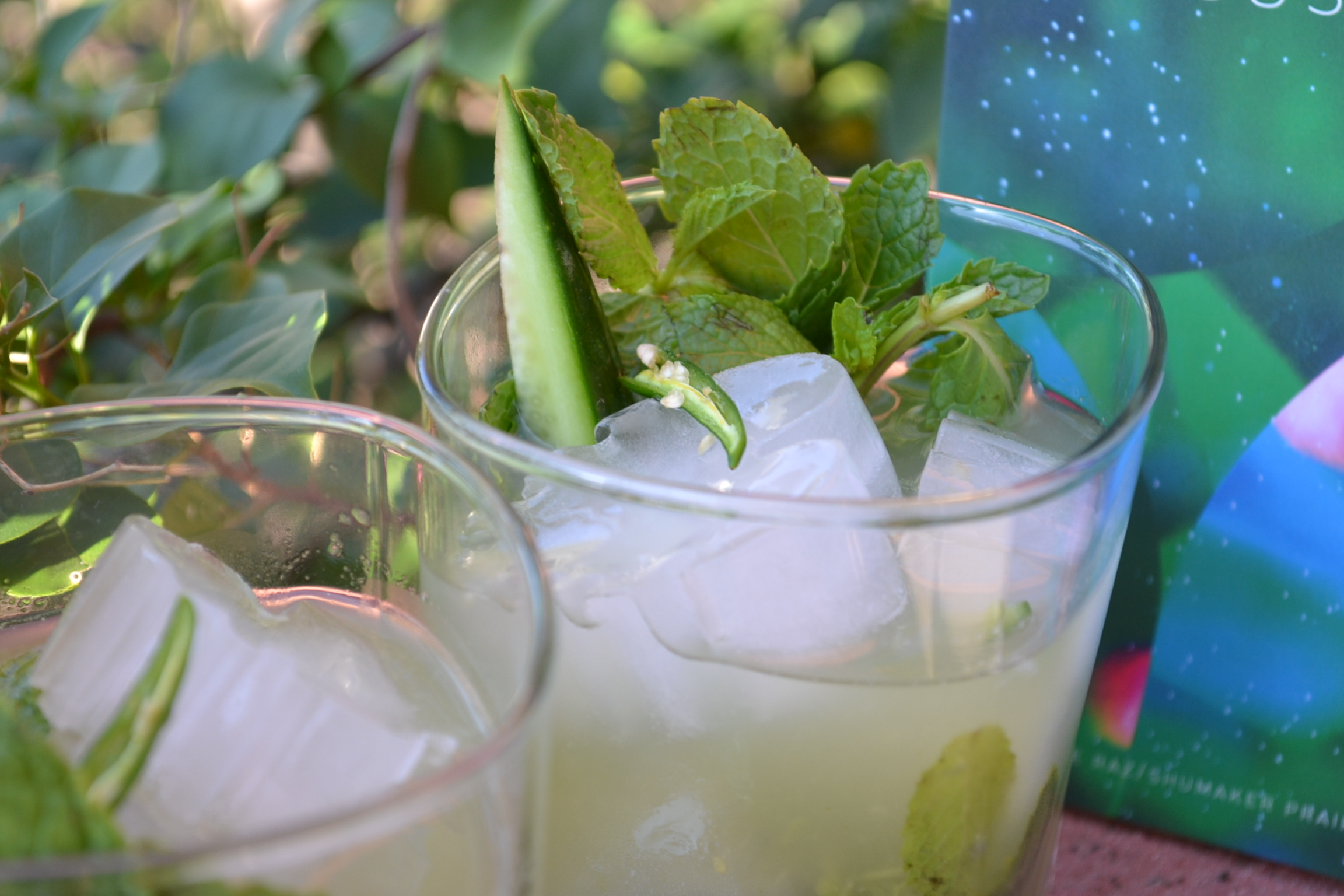 """closeup of two glasses of the """"dream of green"""" cocktail, garnished with mint, cucumber, and Thai chili pepper"""